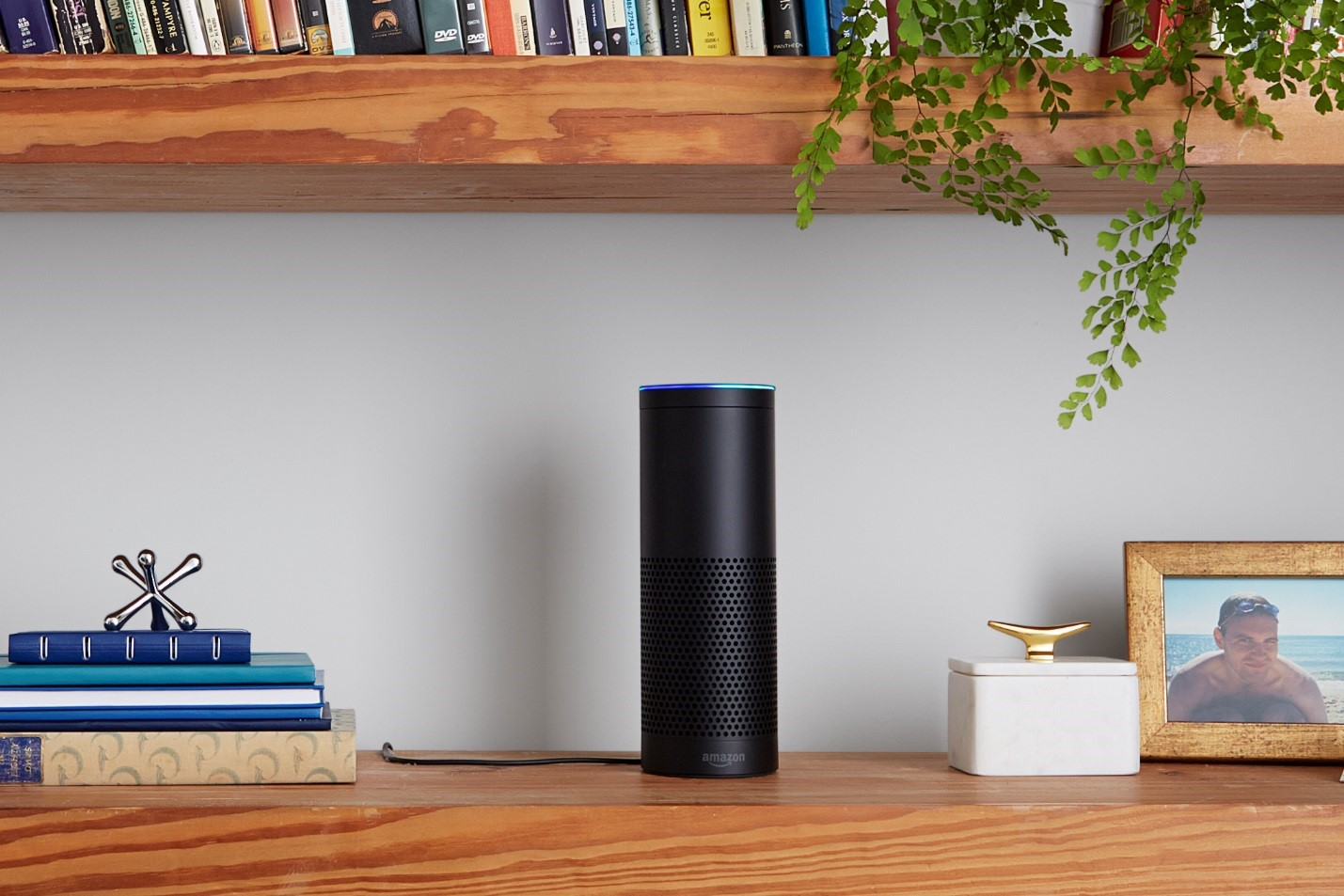 Will We Ever See Voice Control for Commercial Automation?